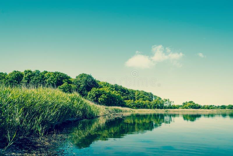 湖风景 免版税库存照片
