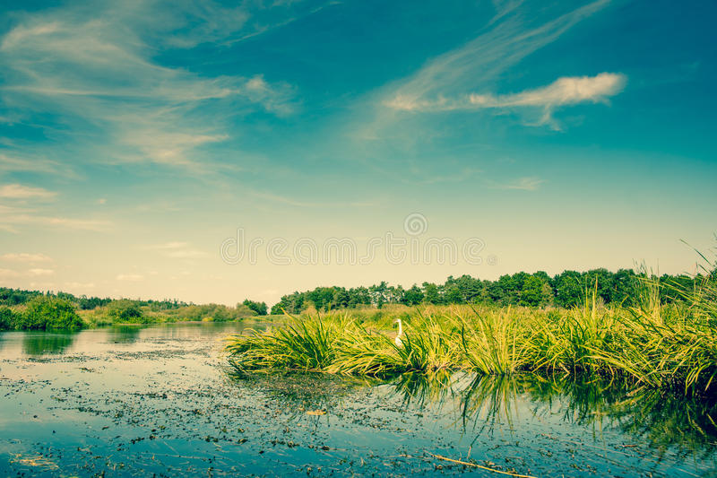 湖风景 图库摄影