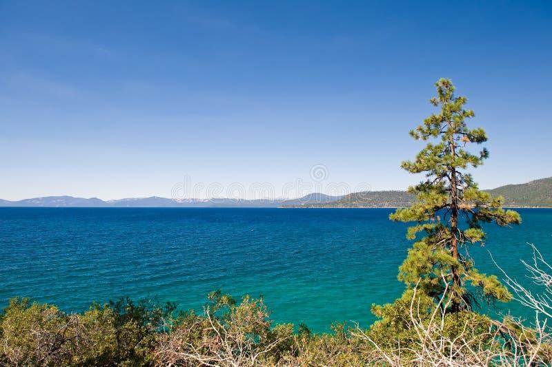 湖风景tahoe 库存图片