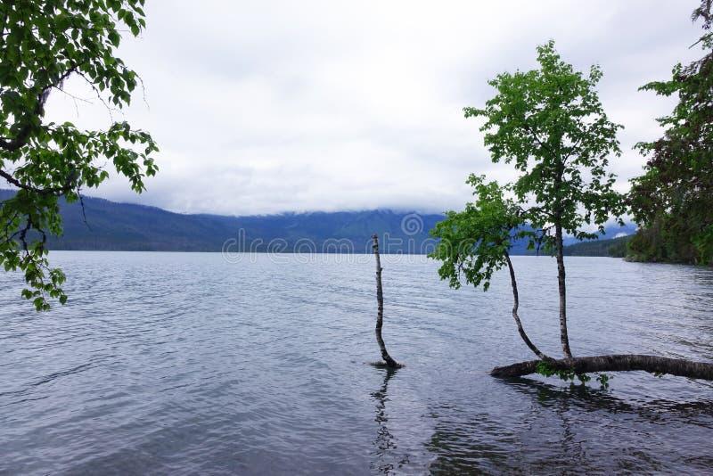 湖麦克唐纳,冰川N P - 蒙大拿 库存图片