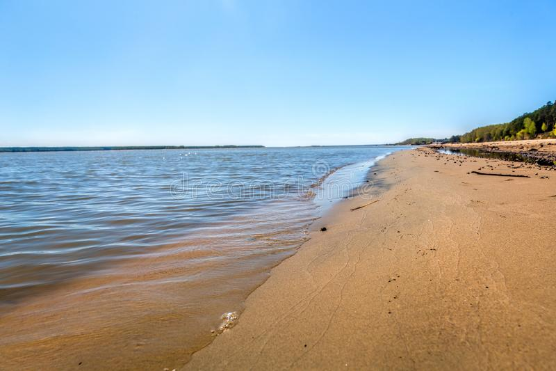 湖,夏天,海滩的岸 免版税图库摄影