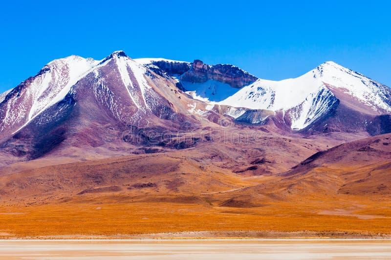 湖,玻利维亚Altiplano 库存照片