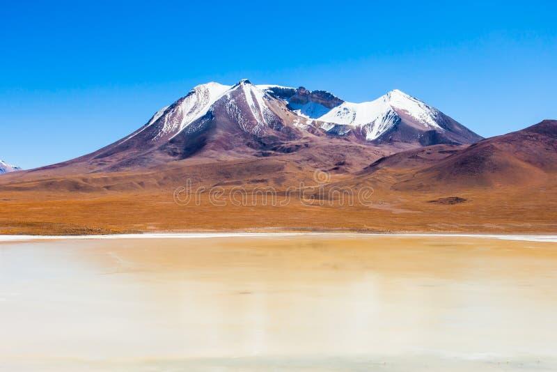 湖,玻利维亚Altiplano 免版税库存图片