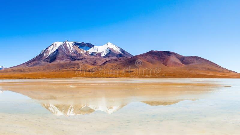 湖,玻利维亚Altiplano 免版税库存照片