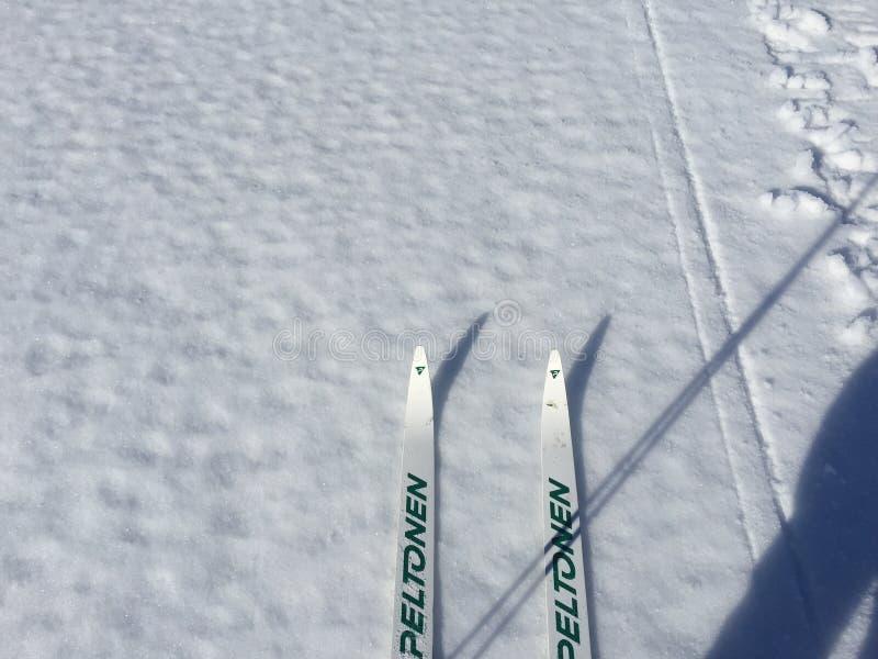 湖滑雪 免版税库存照片