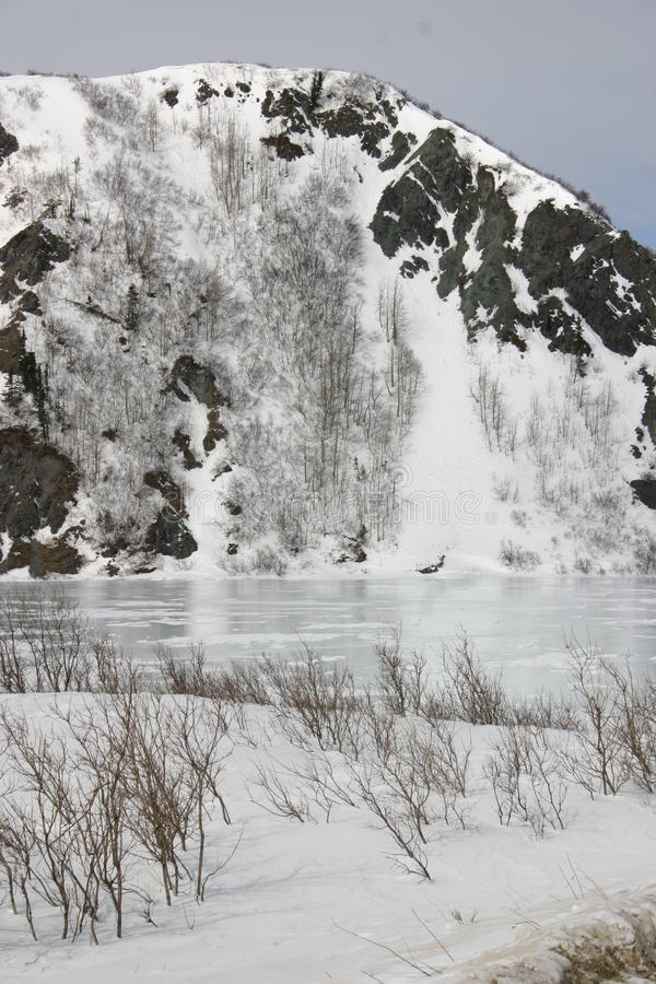 冻结湖 免版税库存照片