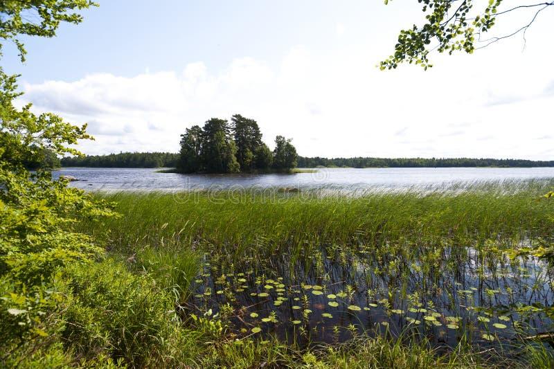 湖Asnen在瑞典 库存图片