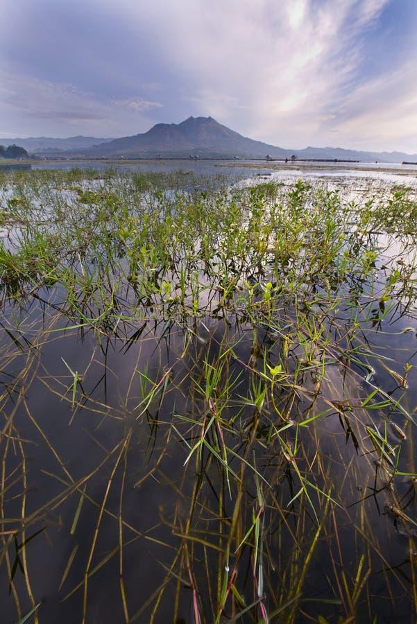 湖Batur巴厘岛-印度尼西亚 免版税库存图片
