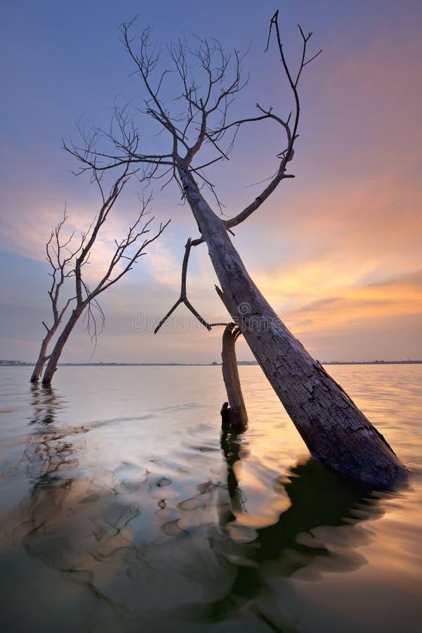湖Batur巴厘岛-印度尼西亚 免版税库存照片