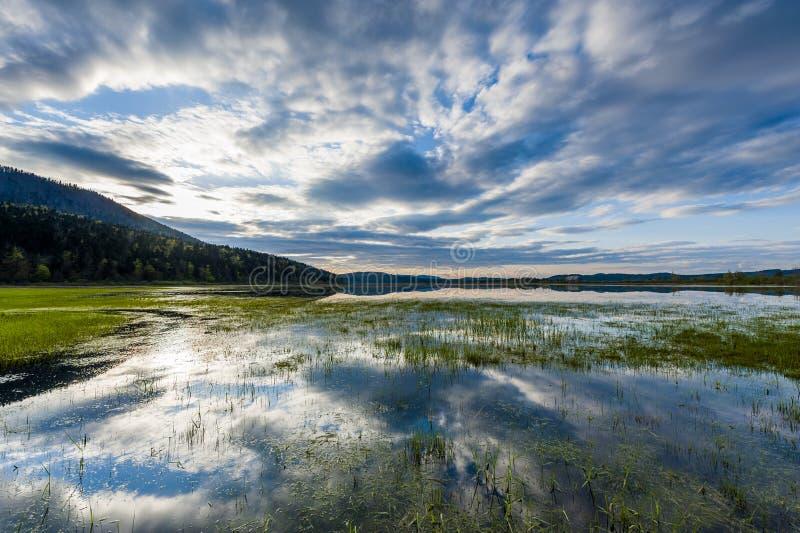 湖Cerknica 免版税库存照片