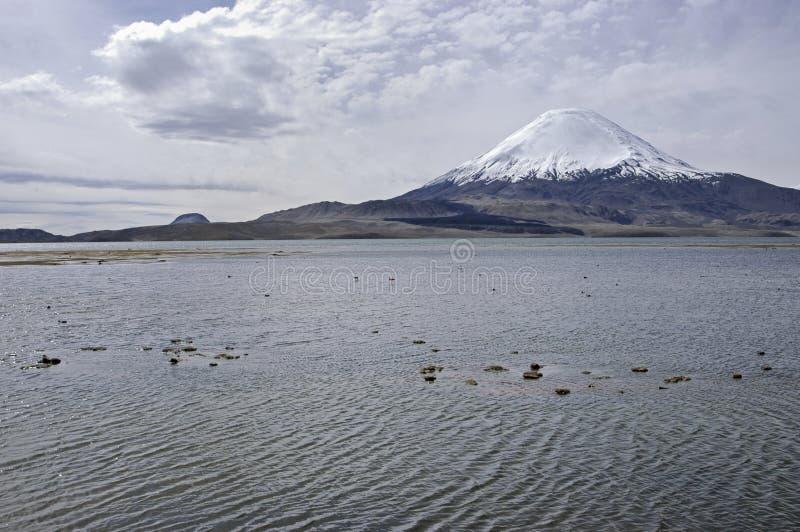 湖Chungara 智利 免版税库存照片