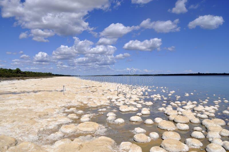 湖Cliffon 图库摄影