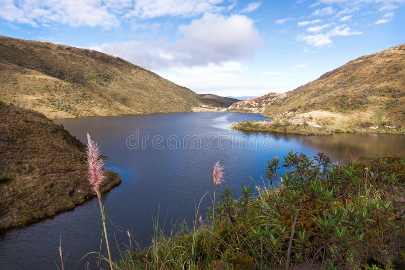湖Curiquingue 库存照片