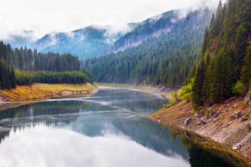湖Galbenu在罗马尼亚 免版税库存图片