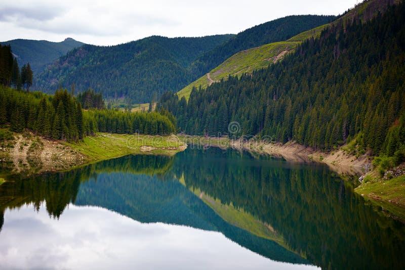 湖Galbenu在罗马尼亚 免版税库存照片