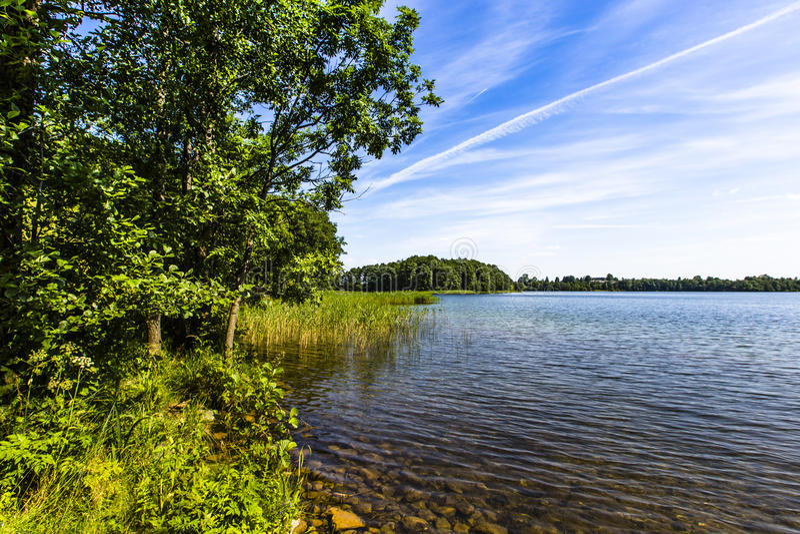 湖Hancza 最深的湖在中欧和东欧 波兰 免版税库存图片