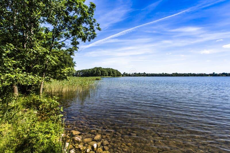 湖Hancza 最深的湖在中欧和东欧 波兰 库存图片