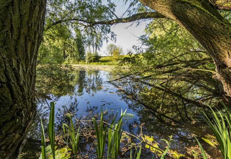 湖Hondegat在Asperen 免版税库存照片