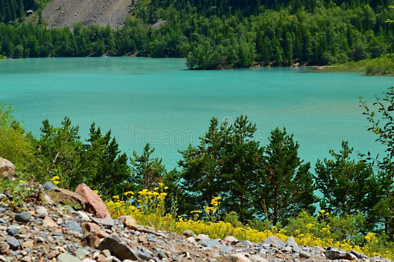 湖Issyk,国家公园,哈萨克斯坦 库存照片