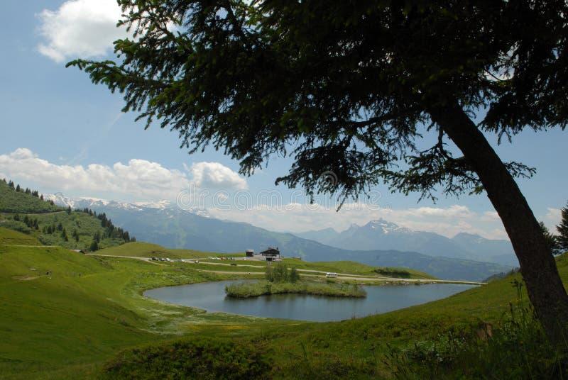 湖Joux飞机在法国阿尔卑斯 免版税库存图片