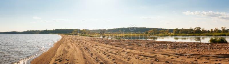 湖Khanka海岸线的全景  免版税库存图片