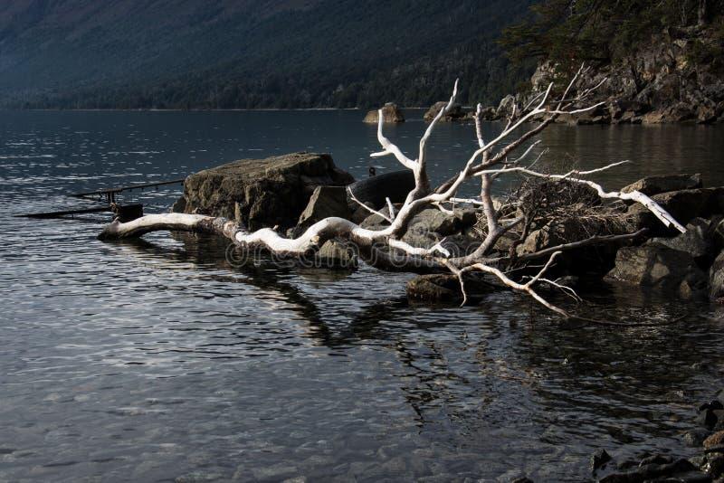 湖Mascardi 免版税库存照片