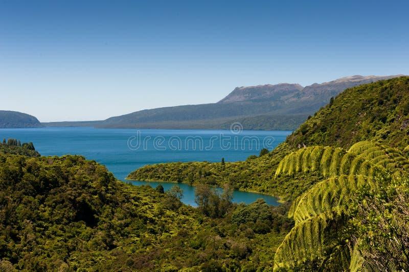湖montain tarawera 库存图片