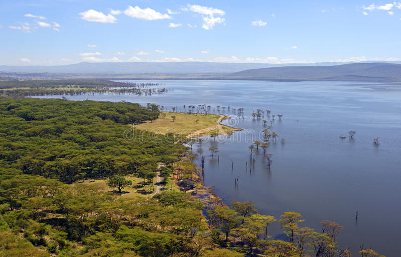 湖Nakuru 库存照片