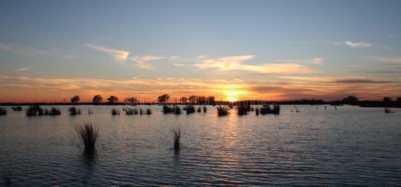 湖pontchartrain 免版税图库摄影