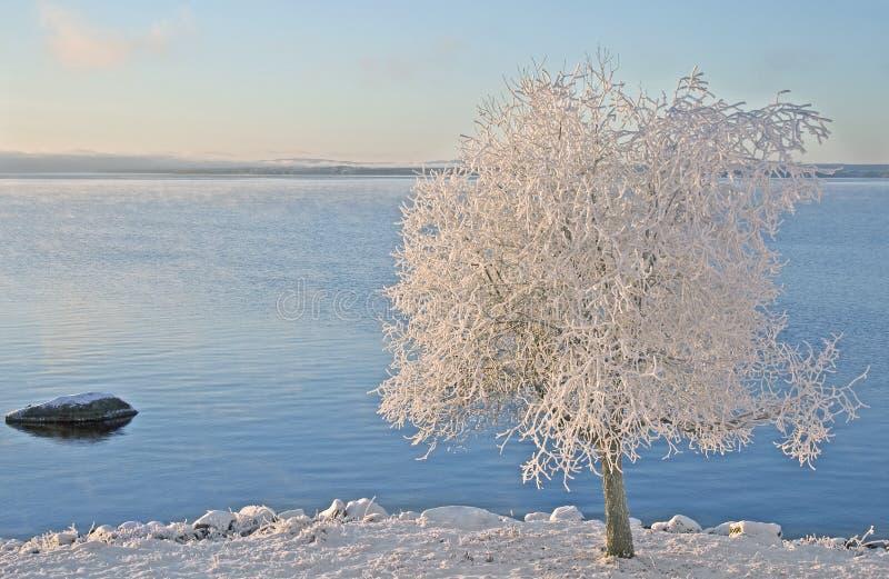 湖r siljan瑞典ttvik 免版税库存照片