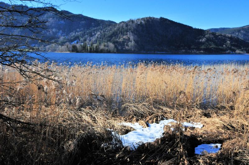 湖schliersee在山的冬天在巴伐利亚 库存图片