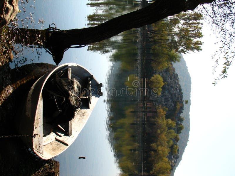 湖skadar的montenegro 免版税图库摄影