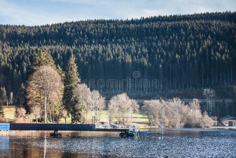 湖Titisee在黑森林,德国 库存图片