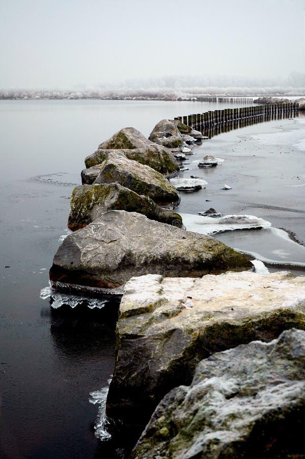 湖veluwe winterlandscape 库存图片