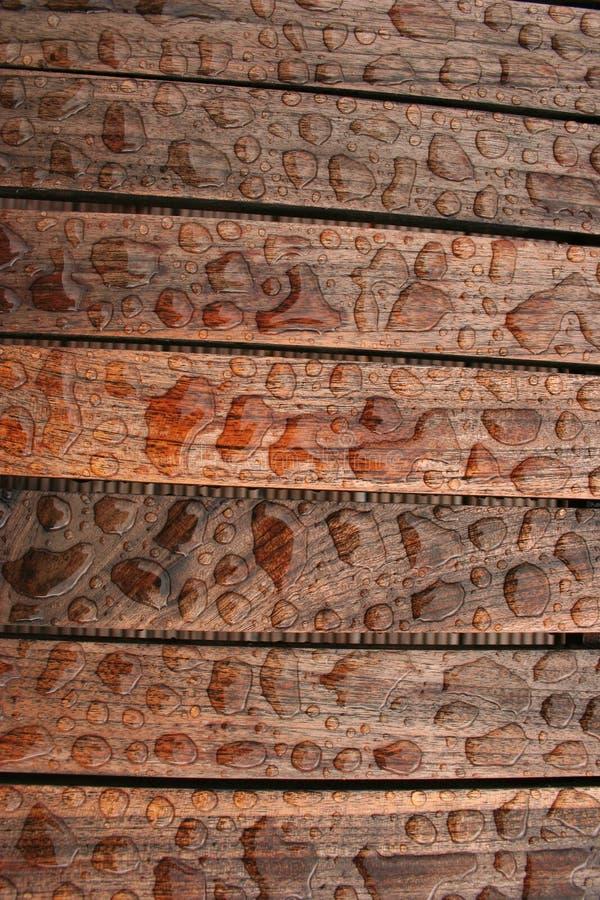湿木头 库存照片