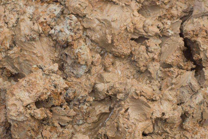 湿棕色黏土 免版税图库摄影