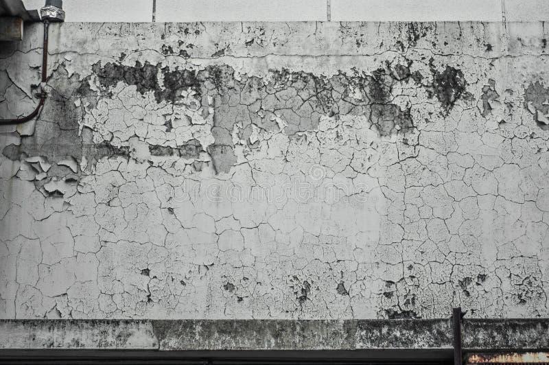 湿气墙壁 免版税库存照片