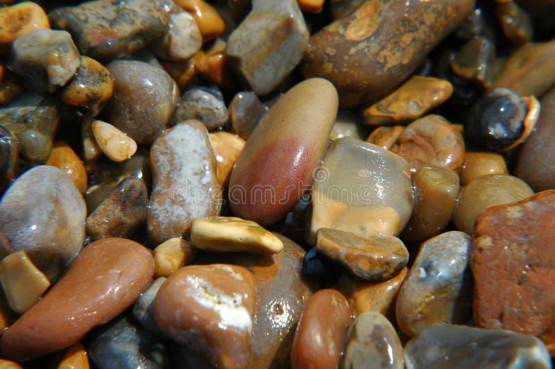 湿的小卵石 库存照片