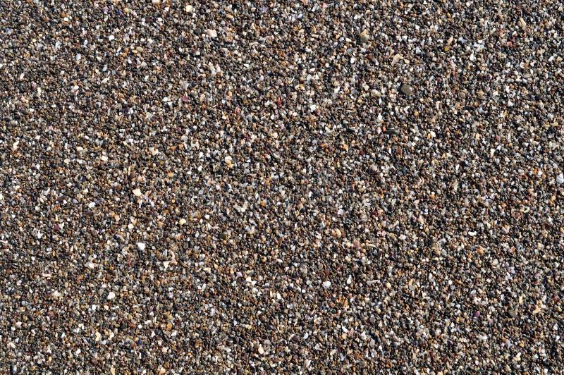 湿的小卵石 免版税库存图片