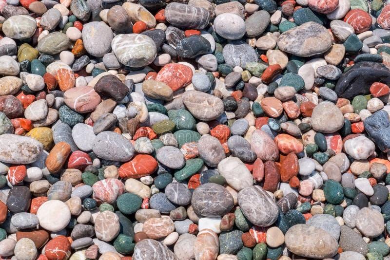 湿的小卵石 库存图片