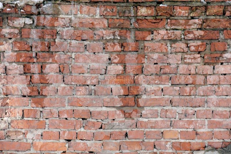 湿砖墙 免版税图库摄影