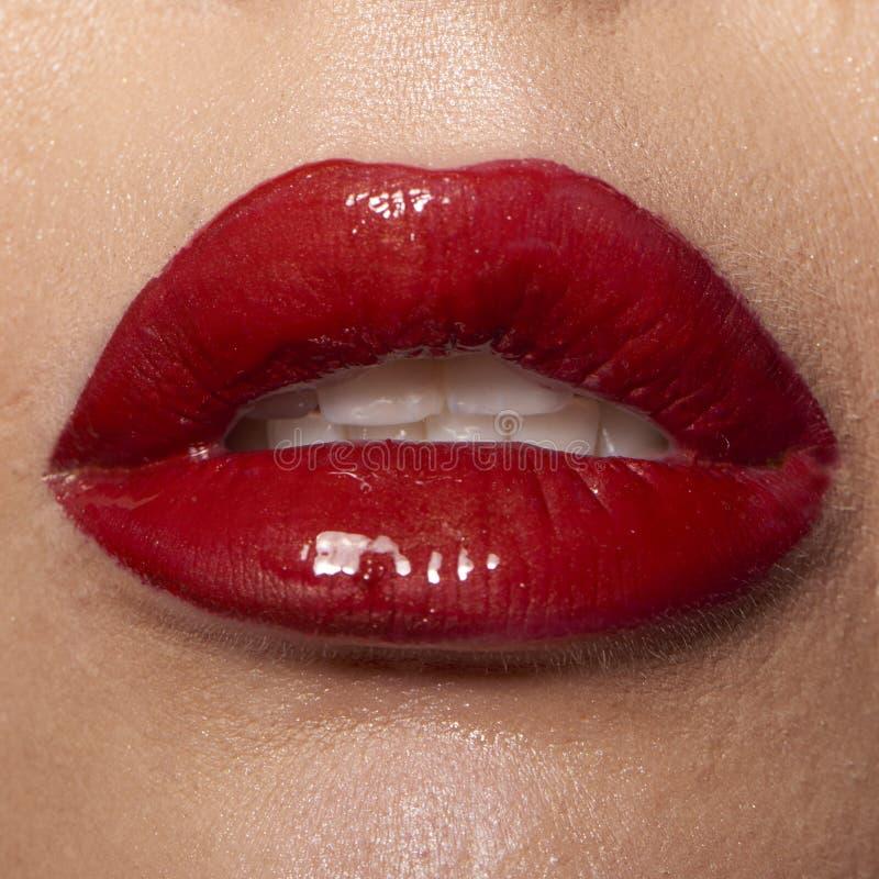 湿红色嘴唇 库存照片