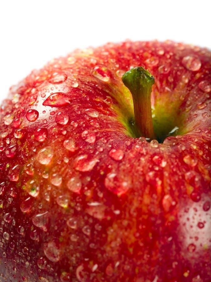 湿红色苹果宏指令 免版税库存照片