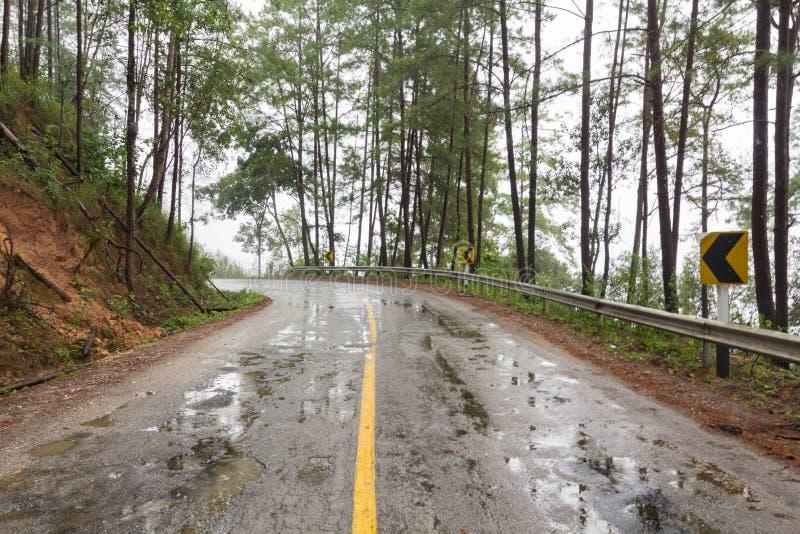 湿路在大雨中 免版税图库摄影