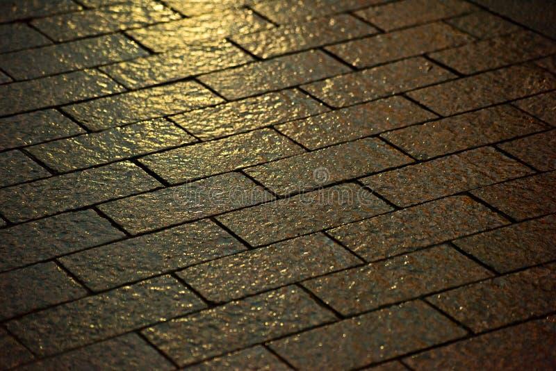 湿铺路石在晚上 库存图片