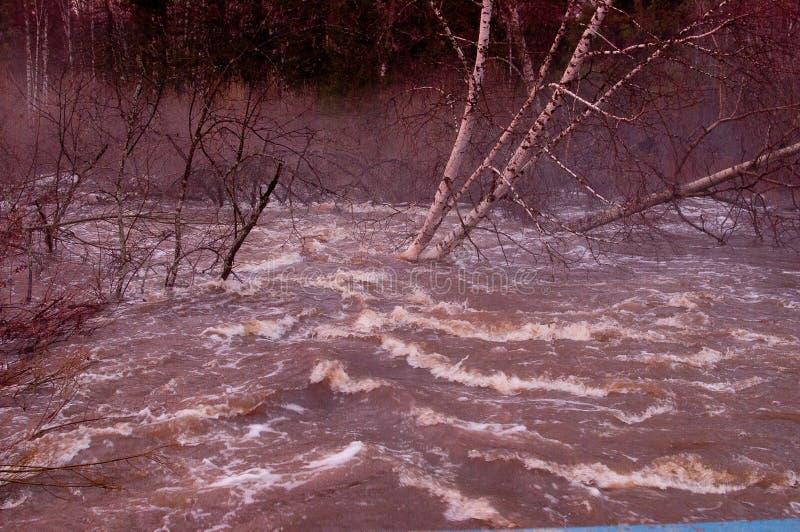 溢出的河 在水的泡沫 库存图片