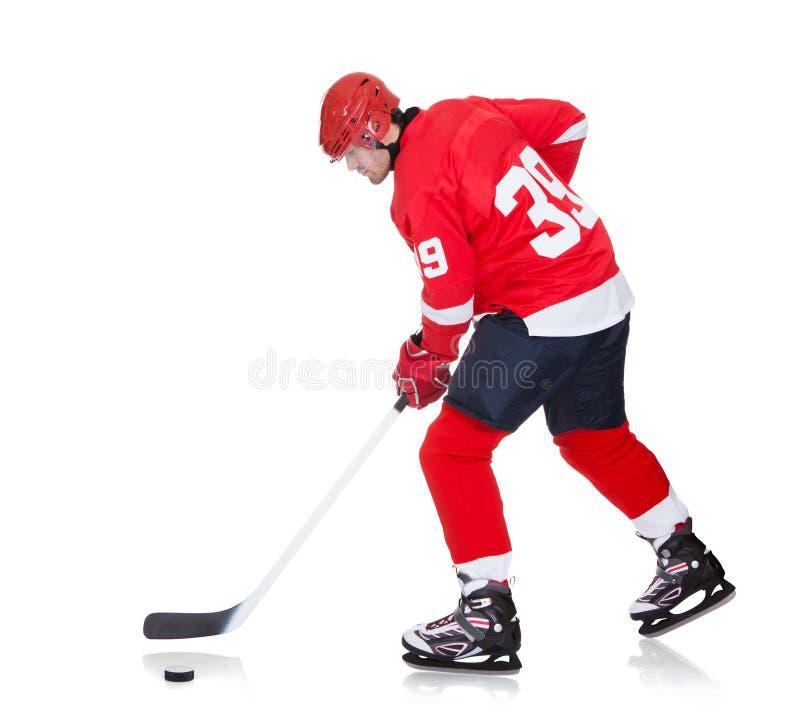 滑冰在冰的专业曲棍球运动员 库存照片