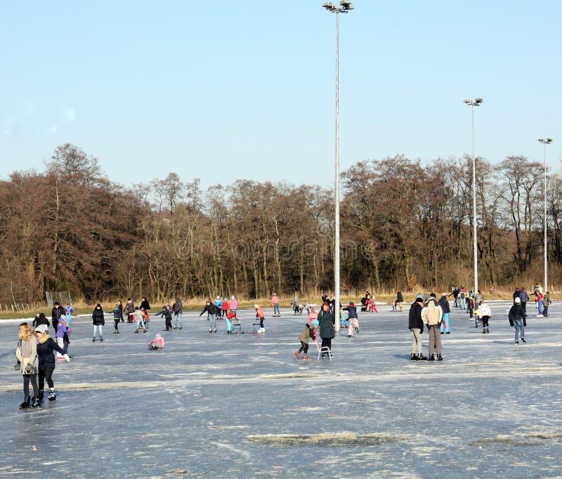 滑冰在滑冰场 免版税库存图片
