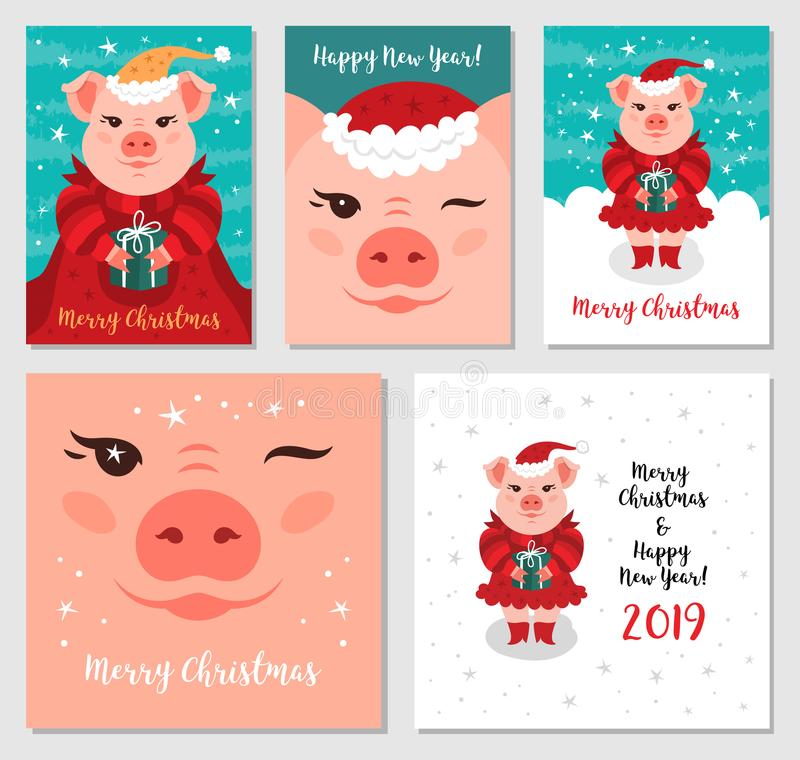 滑稽的圣诞节猪,贺卡圣诞快乐和新年2019年 猪圣诞老人,圣诞卡兆捆绑.图片