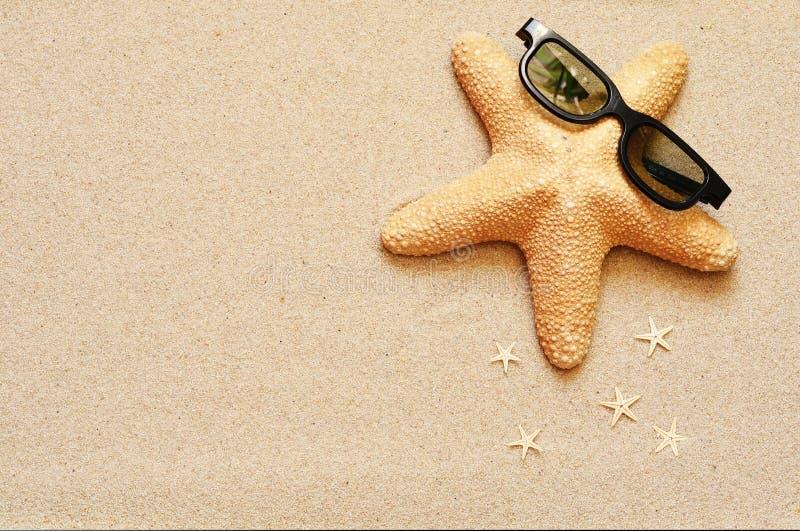 滑稽的海星在夏天靠岸与沙子 免版税库存图片